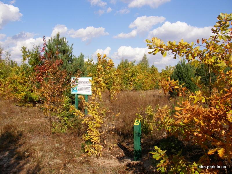 Еколого-туристичний маршрут «Садове»